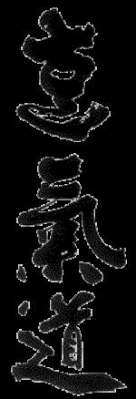 Kampfkunst Spezial, Business Kampfsport, Eigensicherung Selbstschutz